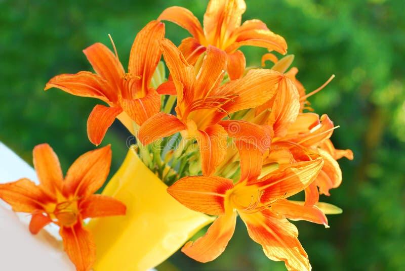 Orange Taglilie Blumenstrauß lizenzfreies stockfoto