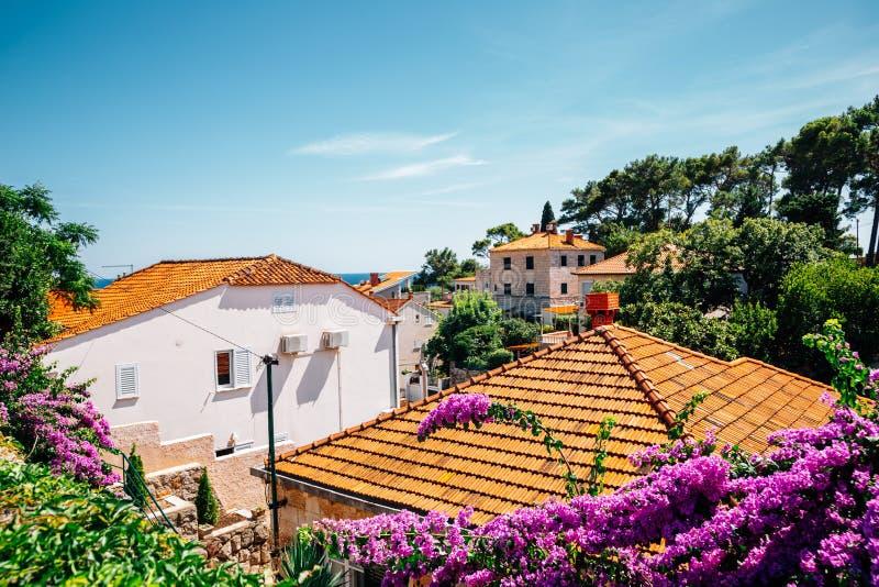 Orange takhus med blommor i Dubrovnik, Kroatien royaltyfri foto