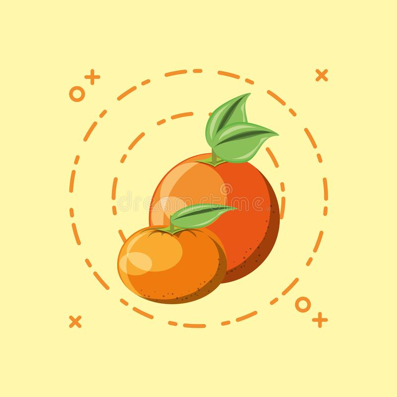 Citric fruits design. Orange and tangerine over yellow background, colorful design, vector illustration vector illustration