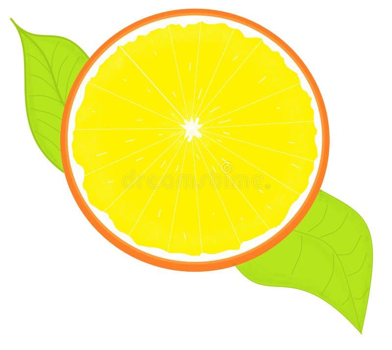 Orange teckning för materielillustration med gröna sidor royaltyfria bilder
