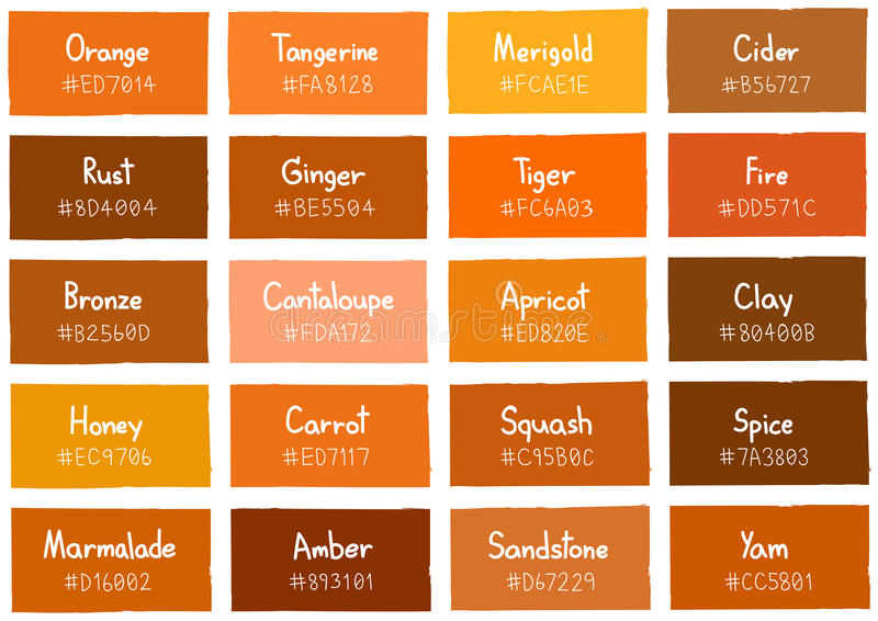 Download Orange Tone Color Shade Background With Code And Name Stock Vector