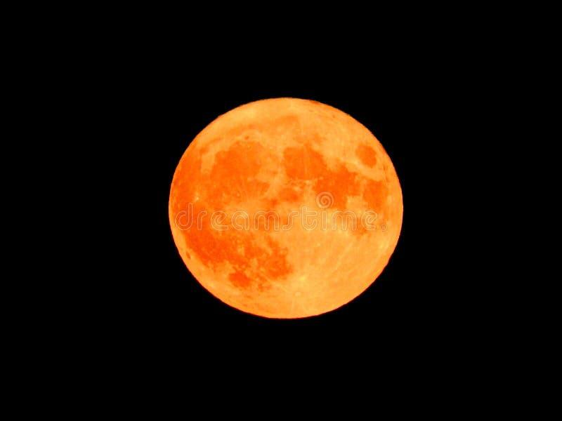 Orange toppen måne på en svart himmel royaltyfri fotografi