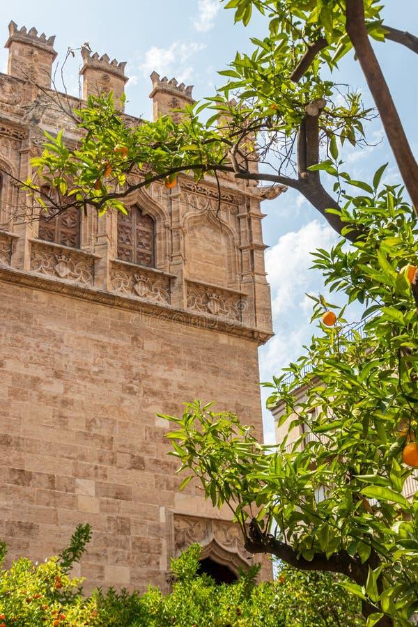 Orange träd som är främst av den siden- utbyteslaen Lonja i Valencia royaltyfria foton
