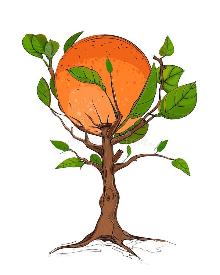 Download Orange Tree Royalty Free Stock Photos - Image: 27001618