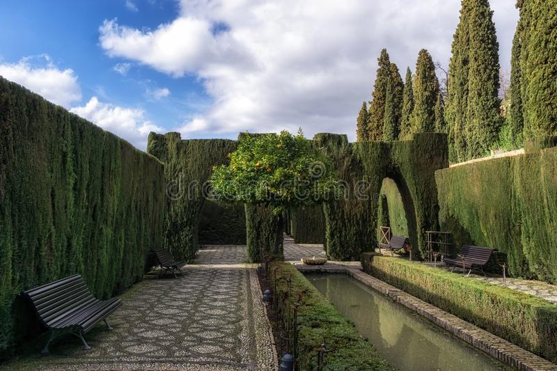 Orange tree in Generalife. Generalife garden orage tree with park benches. Alhambra palace in Granada, Spain stock photo