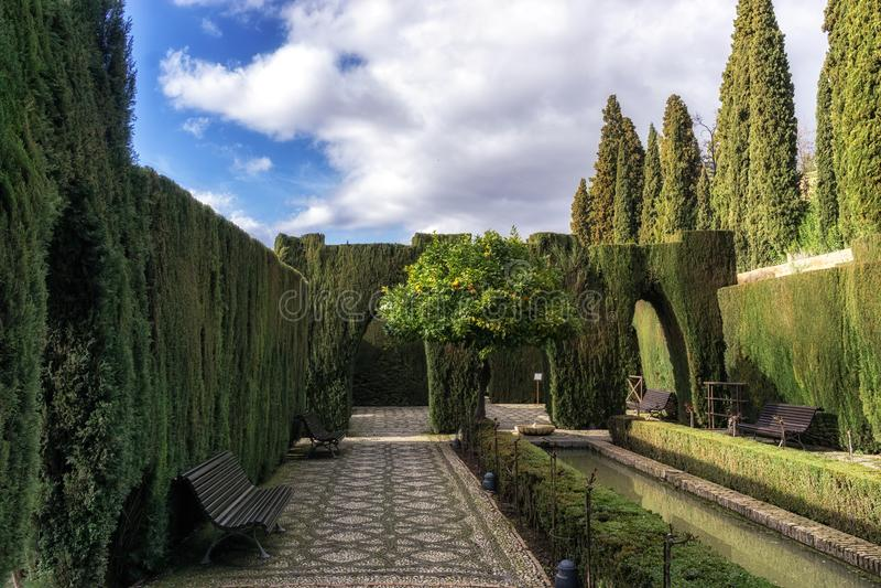 Orange tree in Generalife. Generalife garden orage tree with park benches. Alhambra palace in Granada, Spain stock image
