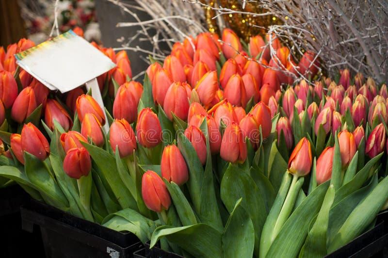 orange Tulpenblumensträuße für Verkauf am Markt lizenzfreie stockfotos