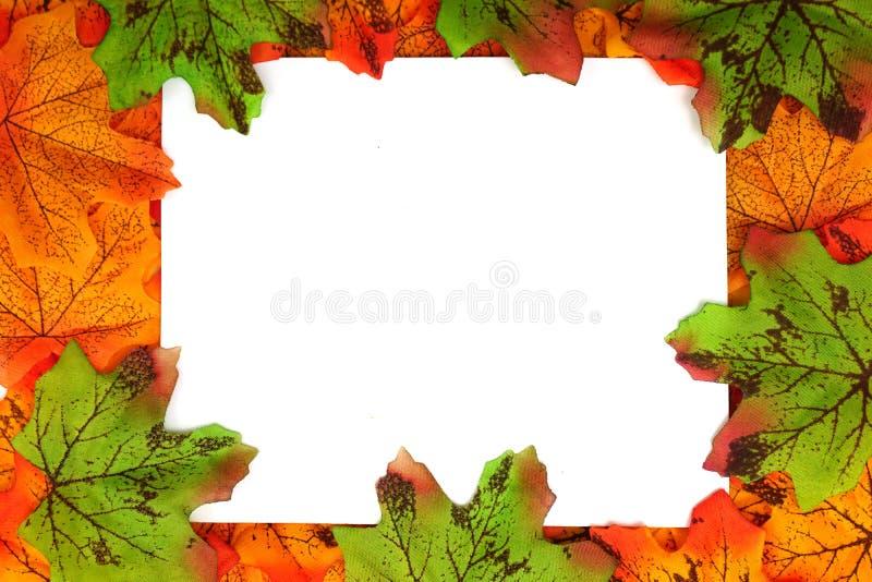 Orange und grüne Ahorn-Herbstblattgrenze mit Raumkopie vorbei auf weißem Hintergrund stockfotos