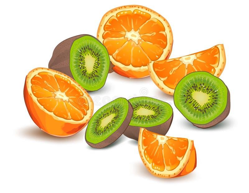 Orange und Kiwi lizenzfreie abbildung