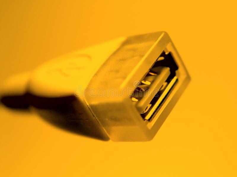 orange usb för kabel royaltyfri bild