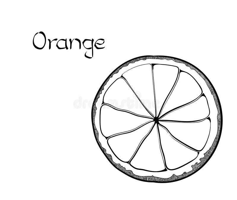Orange vegetarisk sund behandlande hand dragen illustration för vektor Bruk för stången, coctail, reklamblad, baner, lagerlivssti stock illustrationer