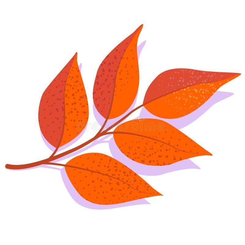 Orange vektoraskablad med skugga som isoleras på vit bakgrund stock illustrationer