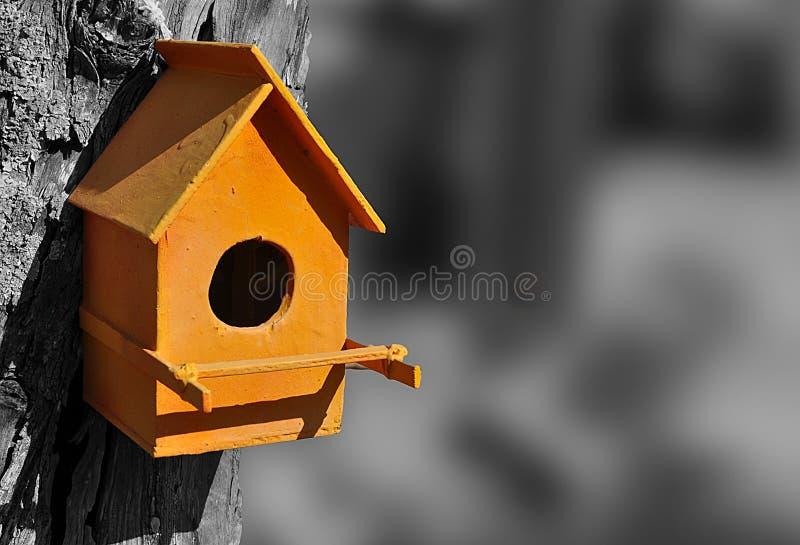 Orange Vogelhaus stockbilder
