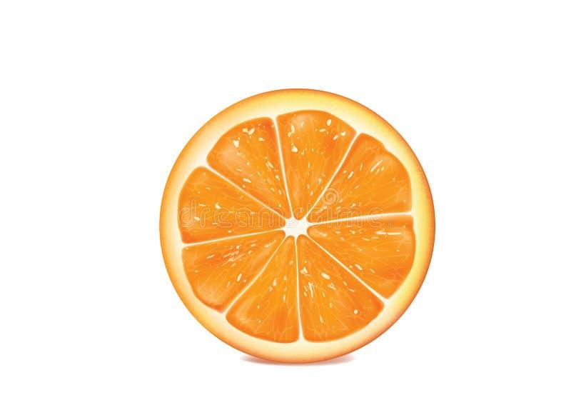 Orange on white background stock photo