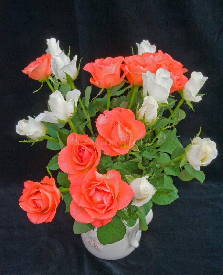 Orange and white roses.