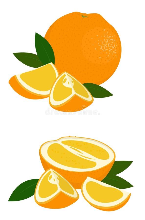 Orange whole, half and slice of orange with leaves on white background. Citrus fruit. Vector illustration of oranges on. Orange whole, half and slice of orange stock illustration