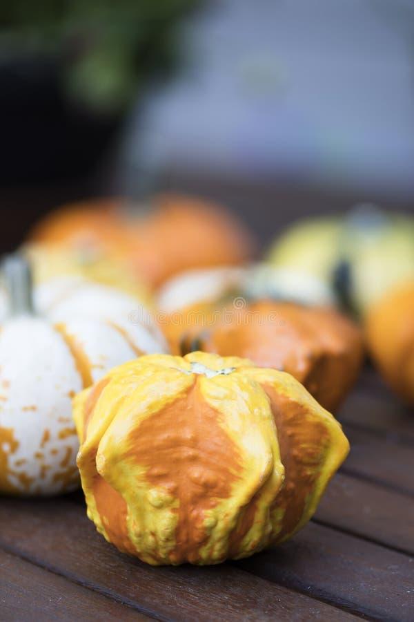 Orange and Yellow Autumn Gourd. Orange and yellow decorative autumn gourd royalty free stock images