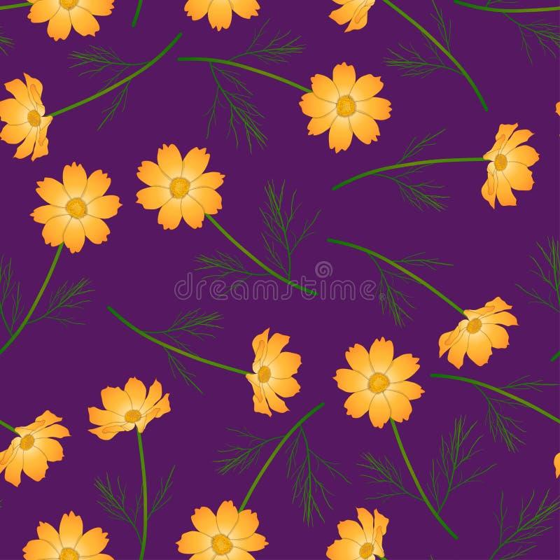 Orange Yellow Cosmos Flower on Purple Background. Vector Illustration royalty free illustration