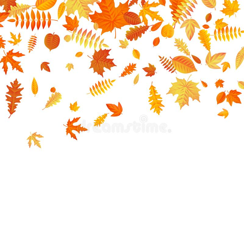 Orange and yellow falling autumn leaves template. EPS 10 stock illustration