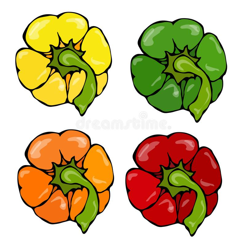 Orange, Yellow, Green, Red Paprika, Bell Pepper or Sweet Pepper Top View. Hand Drawn Sketch Vector Illustration stock illustration
