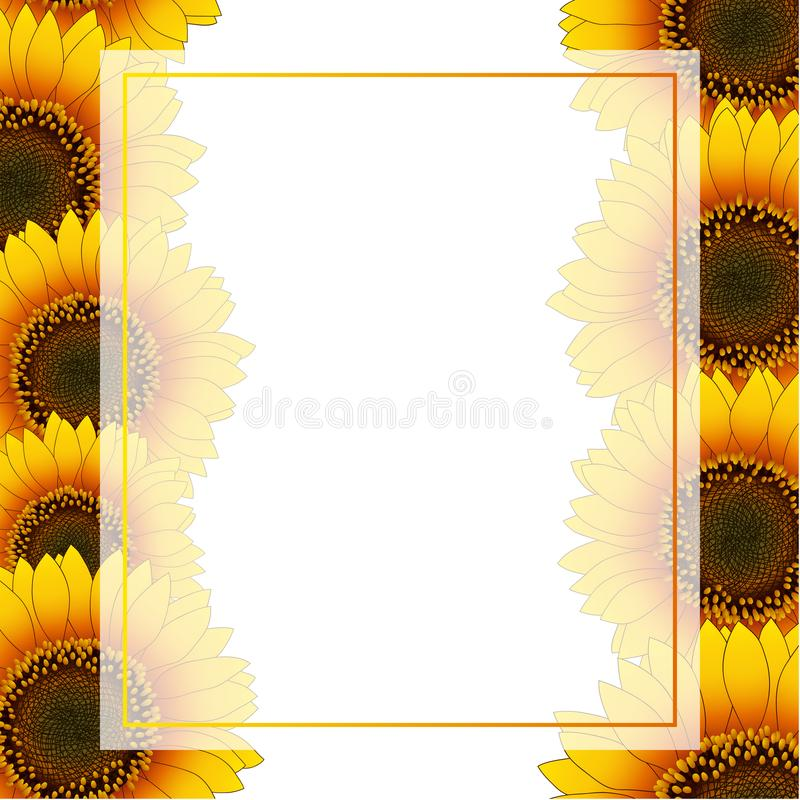 Orange Yellow Sunflower Banner Card Border isolated on White Background. Vector Illustration.  royalty free illustration