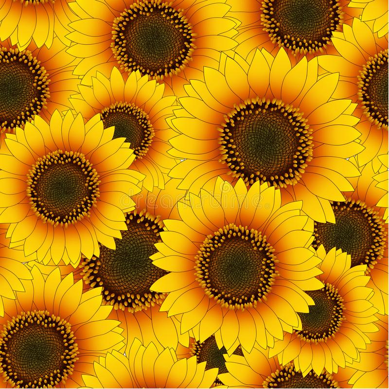 Orange Yellow Sunflower Seamless Background. Vector Illustration. stock illustration