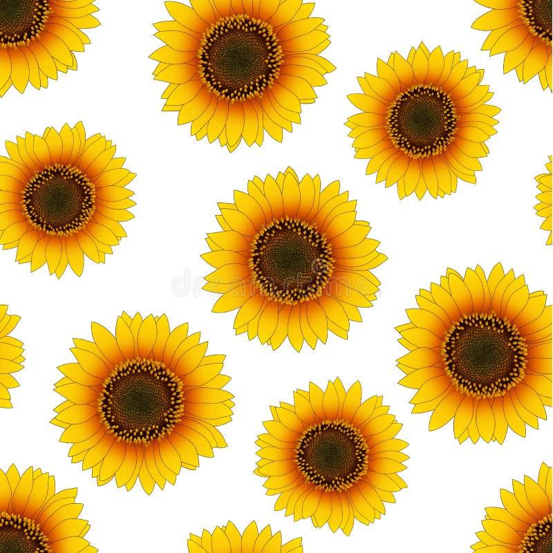 Free Orange Yellow Sunflower Seamless On White Background. Vector Illustration Royalty Free Stock Image - 122304736
