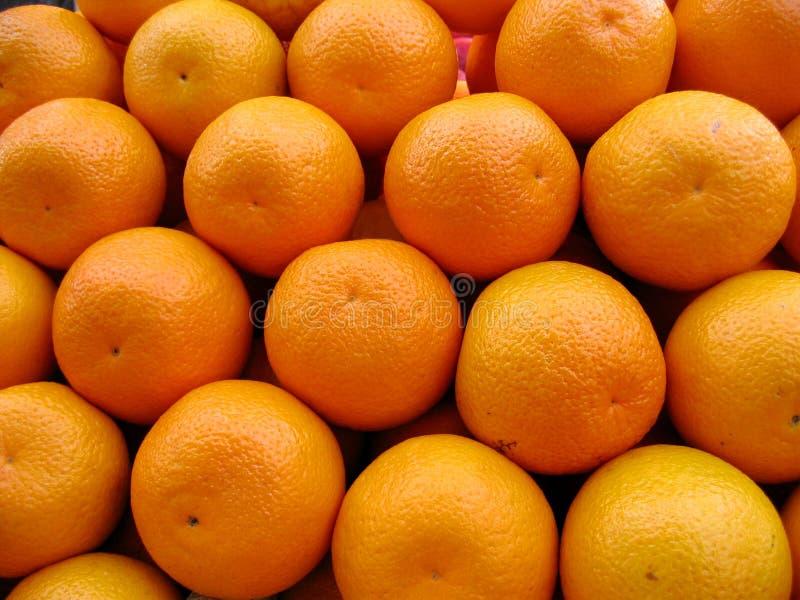 Orangen. lizenzfreie stockbilder