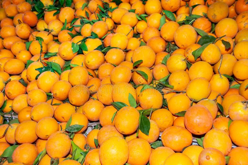 Oranges at a fruit stall at a Moroccan market royalty free stock photos