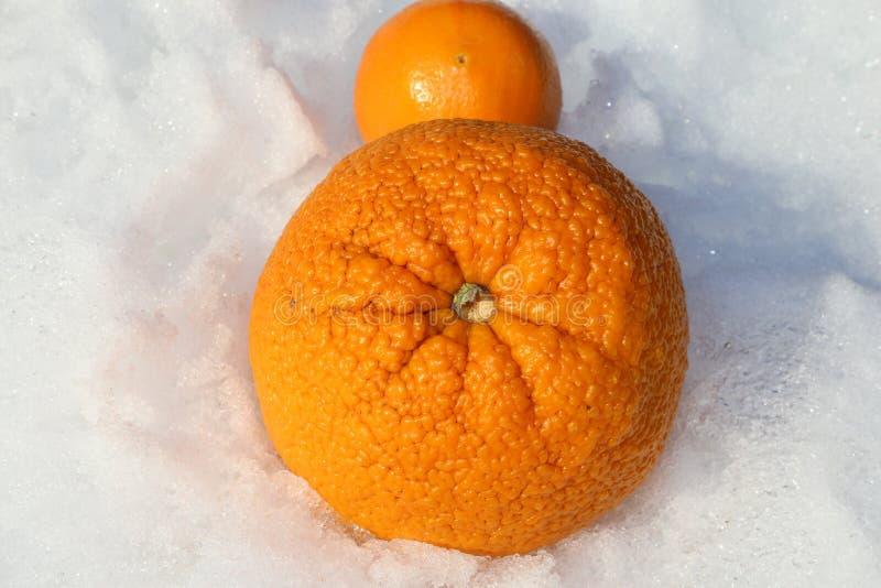 Orangen des Vitamin-c und Kälte- und Grippe-Saison-Geschichte stockbild