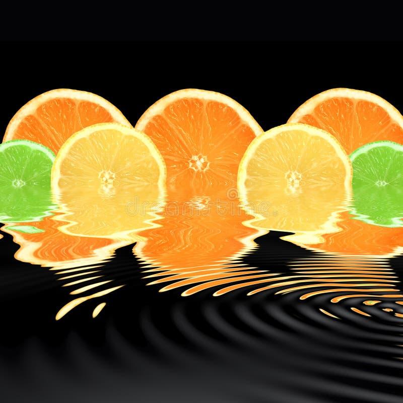 Orangen-, Kalk-und Zitrone-Auszug stockbild