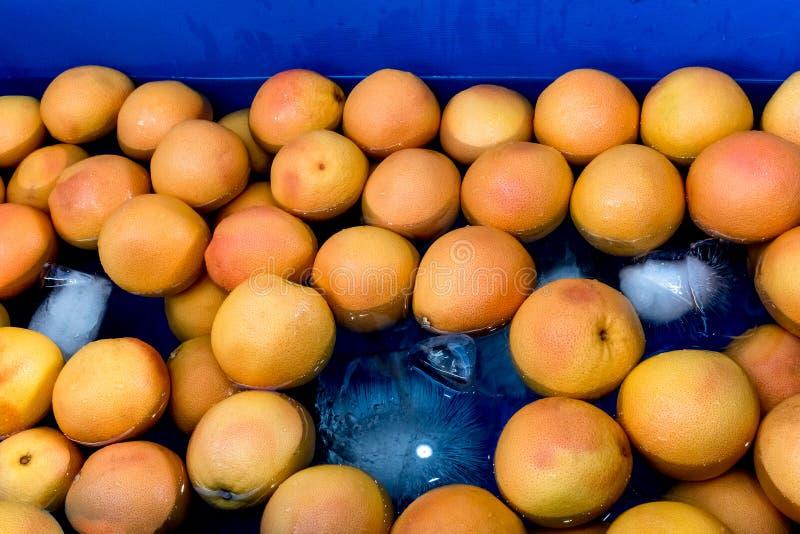 Orangen mit Eis auf einem blauen Hintergrund lizenzfreies stockfoto