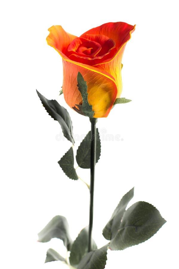 Orangen-rosafarbener Latex stockbilder