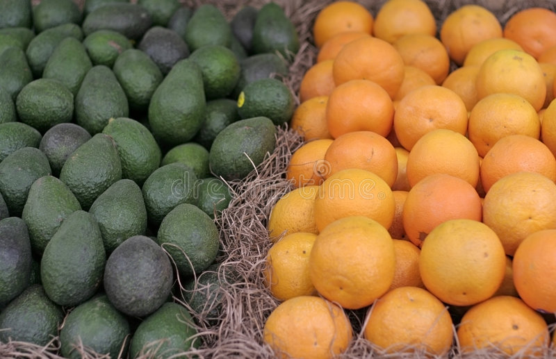 Orangen und Avocados stockfotos