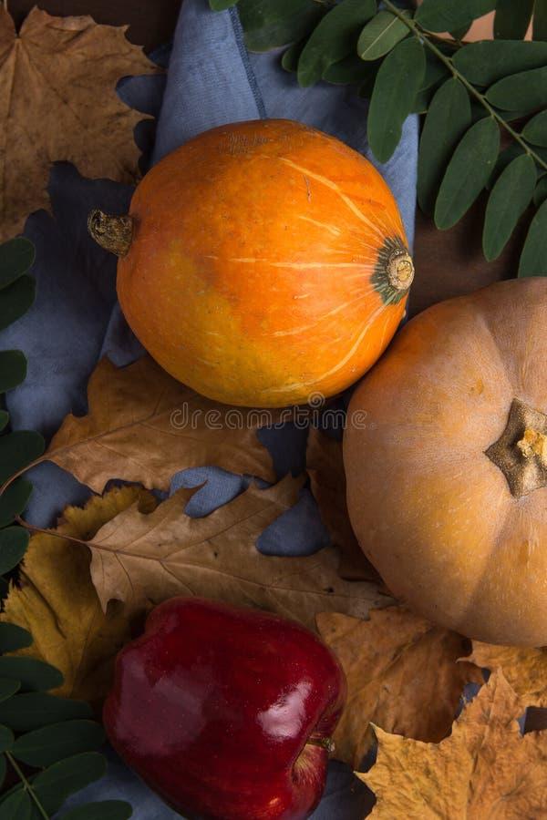 Orangen-und Pfirsich-Farbkürbise rotes Apple trockener bunter Autumn Leaves und grüne Heuschrecken-Niederlassungen auf blauem Lei lizenzfreie stockfotografie