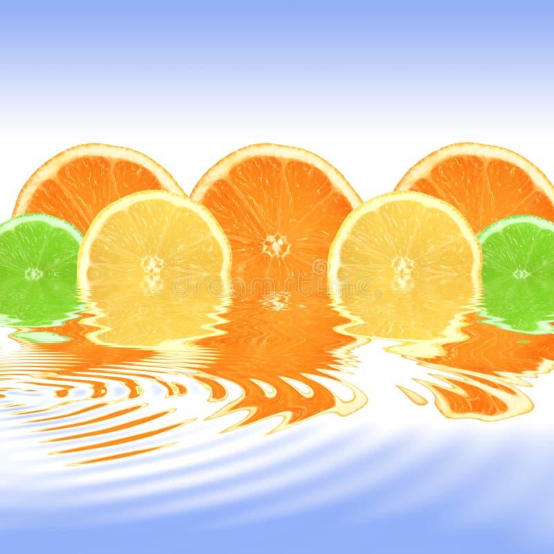 Orangen-, Zitrone-und Kalk-Auszug stockfoto