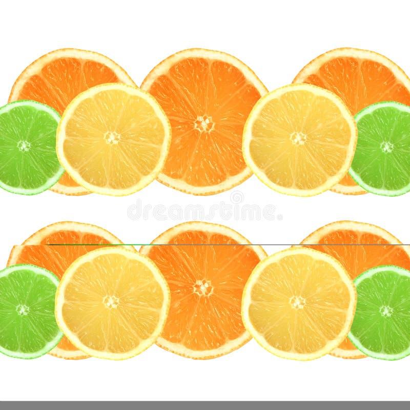 Orangen, Zitronen und Kalke stockbilder