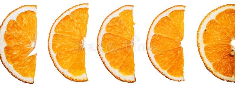 Orangenscheiben - köstliche essbare Hintergrundgrenze lizenzfreie stockfotografie