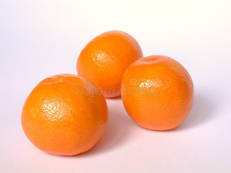 Download Oranges stock image. Image of oranges, tasty, orange, juicy - 10021