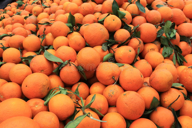 Download Oranges stock image. Image of composition, diet, fresh - 13464963
