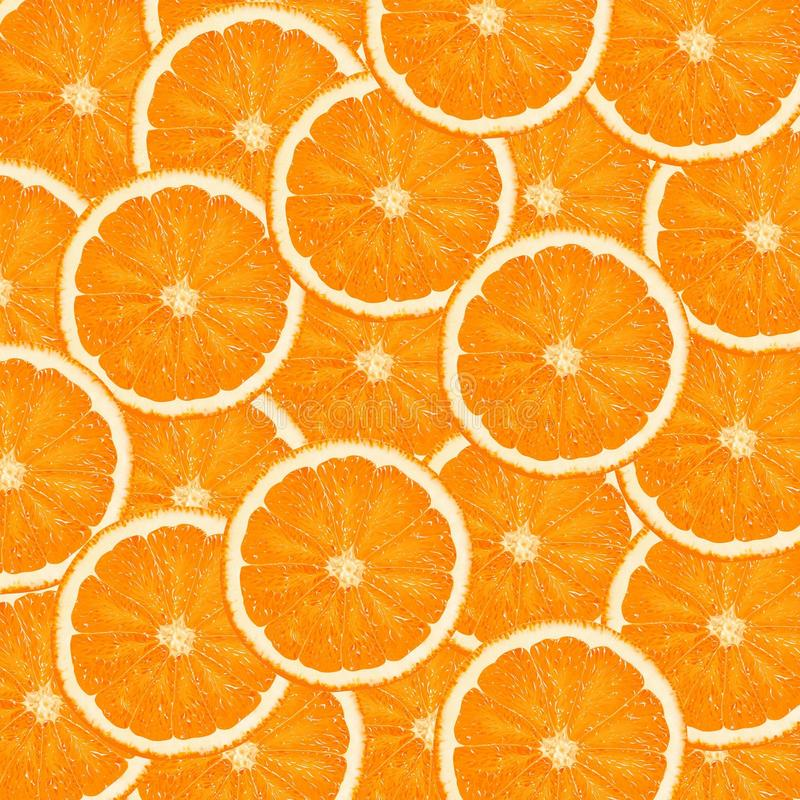 Download Oranges stock illustration. Image of food, orange, halved - 13696762