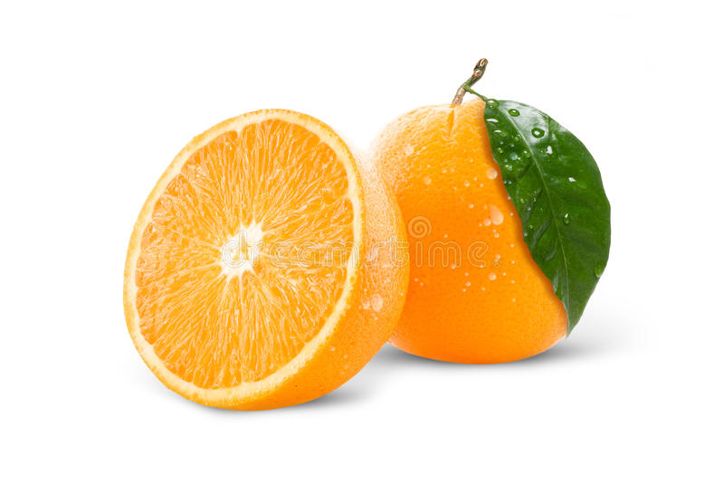 Oranges stock photo