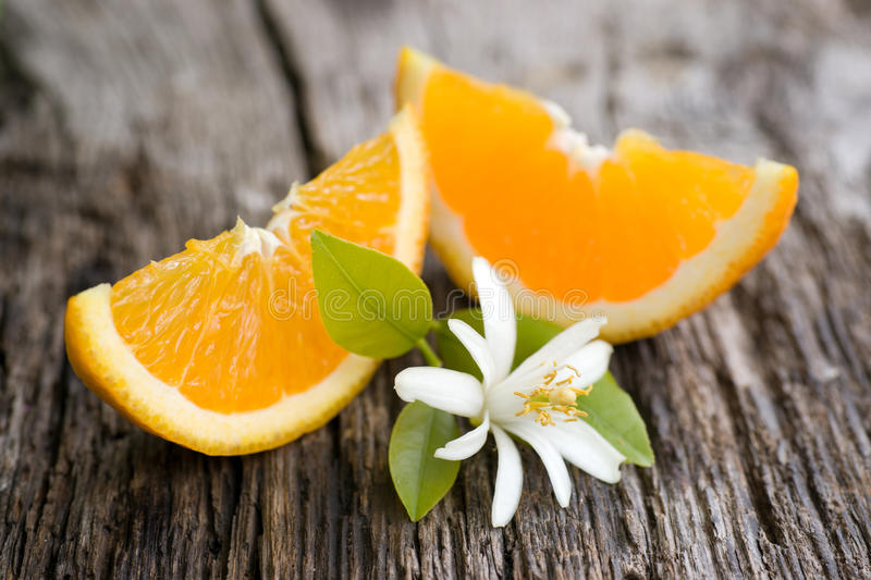 Download Oranges stock photo. Image of biological, blossom, organic - 26105940