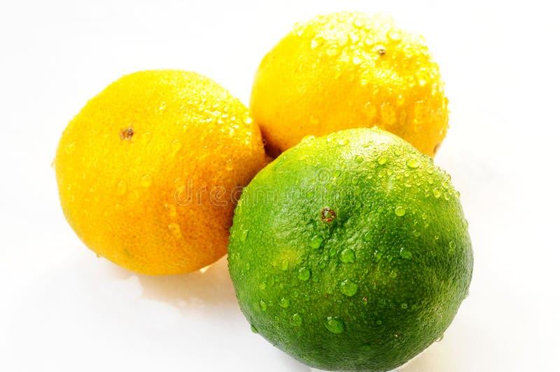 Download Oranges stock image. Image of sour, juicy, taste, round - 26896963
