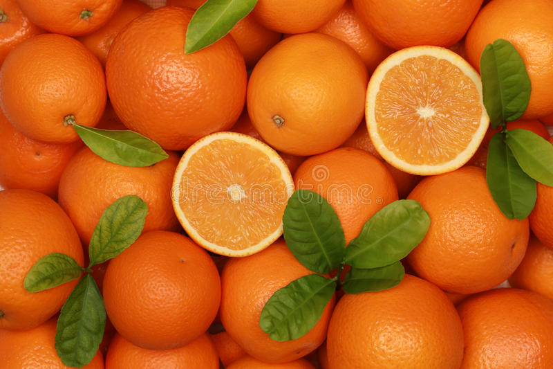 Download Oranges stock image. Image of fruits, snack, healthy - 26993095