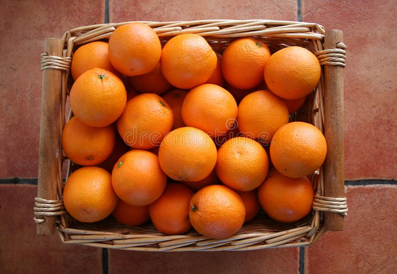 Download Oranges stock image. Image of healthy, green, growth, tile - 4146425