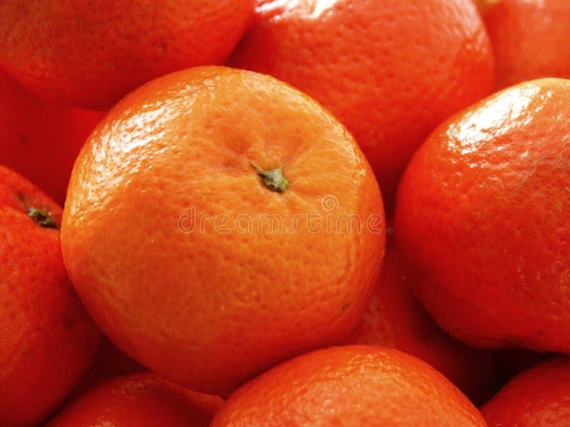 Download Oranges image stock. Image du rond, centrales, oranges, toujours - 91107