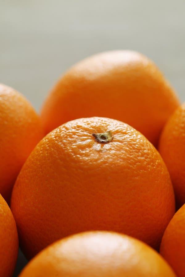 Oranges image stock