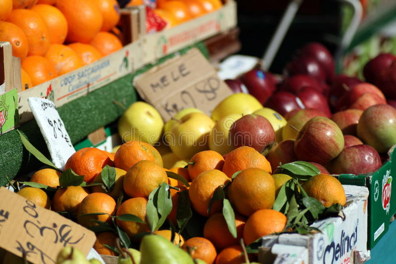 Download Oranges And Apples In The Sun Stock Photo - Image: 19023222