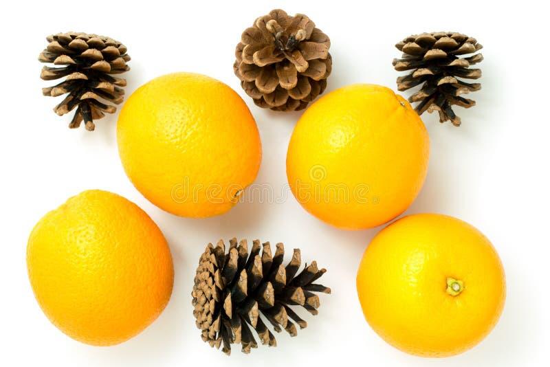 Oranges avec des cônes de pin sur le fond blanc, images libres de droits